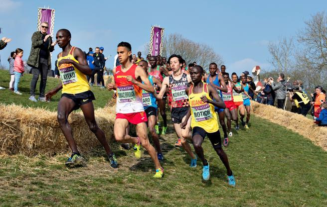 IAAF Campeonato Mundial de Cross country - Dinamarca